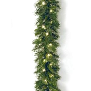 National Tree Co. 9ft Pine Garland, Clear Lights